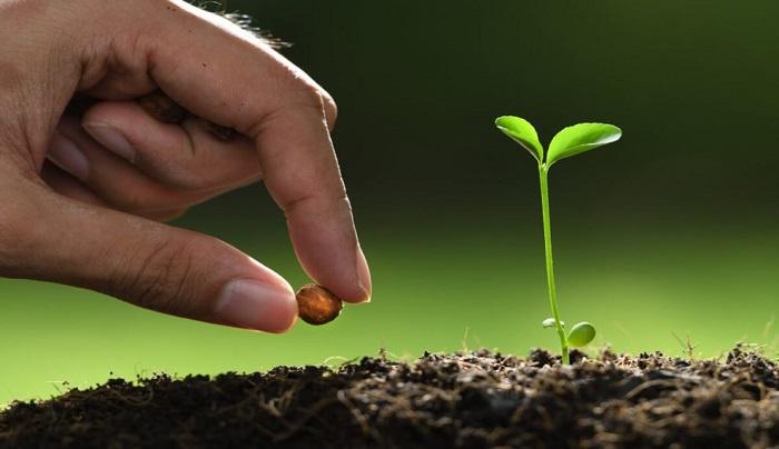 Benih Profetik (The Prophetic Seed) – Restoration